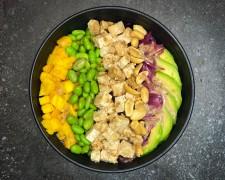Vegano de tofu